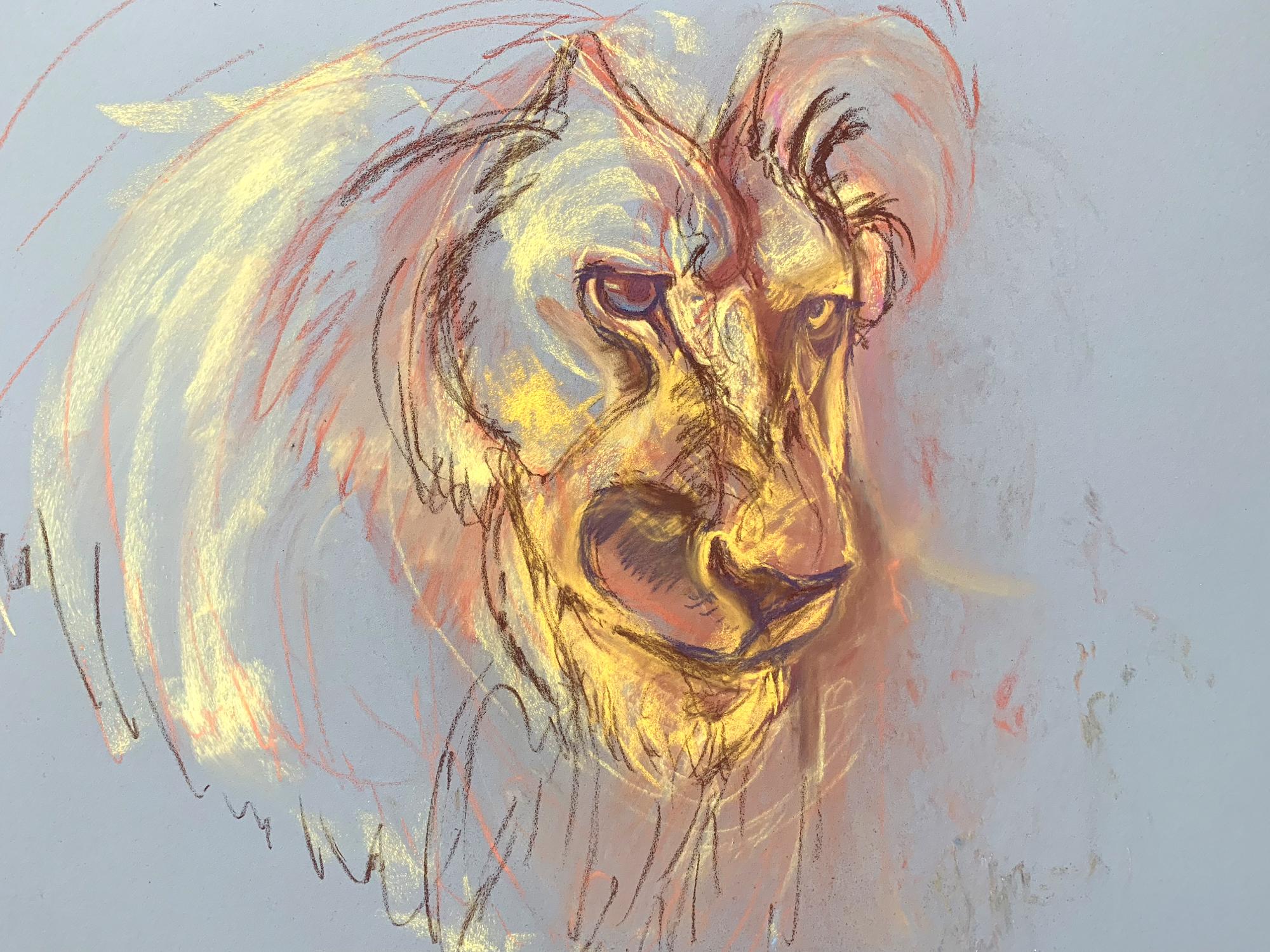 Lion Portrait ~ in progress